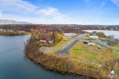 Wasilla Residential Lots & Land For Sale: 1601 Shoreline Drive