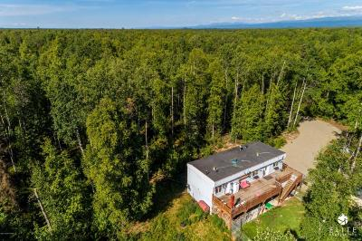 Willow Single Family Home For Sale: 24426 W Long Lake Road