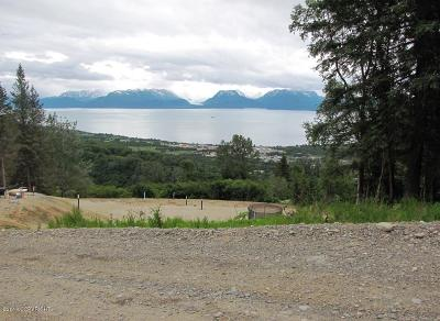 Residential Lots & Land For Sale: 5760 Scenic Place