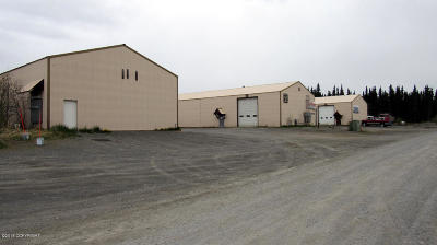 Soldotna Commercial For Sale: 35348 K B Drive