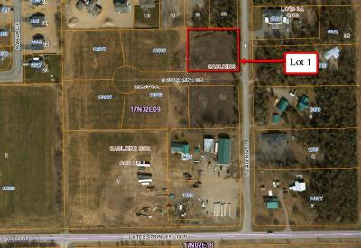 Palmer Residential Lots & Land For Sale: L1 Coloaska Circle