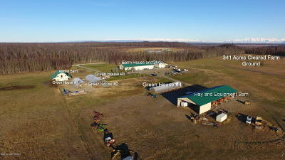 Wasilla Commercial For Sale: 23692 Holstein Avenue
