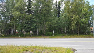 Soldotna Residential Lots & Land For Sale: 161 Birch Street