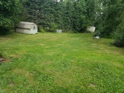 Chugiak Residential Lots & Land For Sale: 20513 Scenic Drive