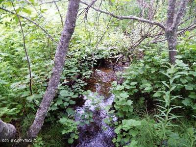 Ninilchik AK Residential Lots & Land For Sale: $125,000