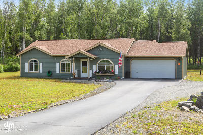 Wasilla Single Family Home For Sale: 4990 W Hidden Paradise Road