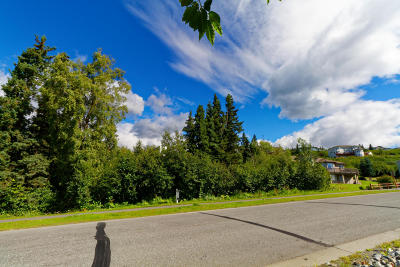 Anchorage Residential Lots & Land For Sale: L26 B1 Prominence Pointe Drive