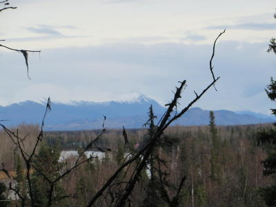Soldotna Residential Lots & Land For Sale: 35370 Fishermans Road