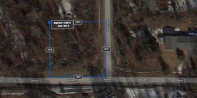 Eagle River Residential Lots & Land For Sale: NHN Teal Loop