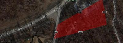 Eagle River Residential Lots & Land For Sale: NHN Thunderbird Drive