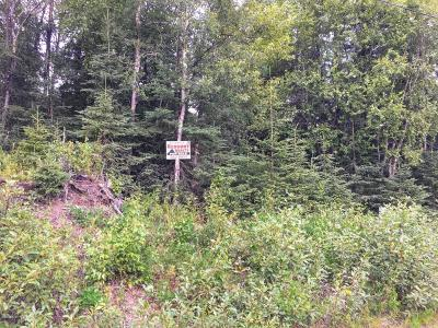 Kenai Residential Lots & Land For Sale: 1110 2nd Avenue