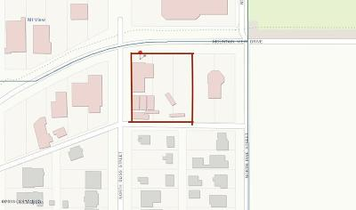 Anchorage Commercial For Sale: 4602 Mountain View Loop