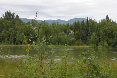 Wasilla Residential Lots & Land For Sale: 6860 Marge