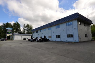 Eagle River Commercial For Sale: 10421 Vfw Road