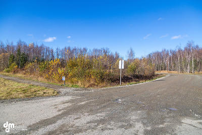 Wasilla Residential Lots & Land For Sale: 7938 Knik Goose Bay Road