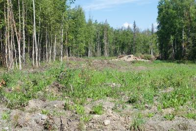 Wasilla Residential Lots & Land For Sale: MOOSE PK PH V TRACT D-4