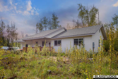 Wasilla Single Family Home For Sale: 3635 S Lansing Road