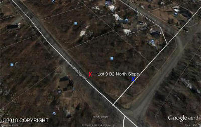 Eagle River Residential Lots & Land For Sale: L9 B2 Prudhoe Bay Avenue