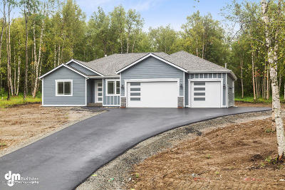Wasilla Single Family Home For Sale: 1720 W Amethyst Circle
