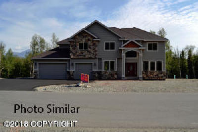 Wasilla Single Family Home For Sale: Tr D Pinnacle Peak