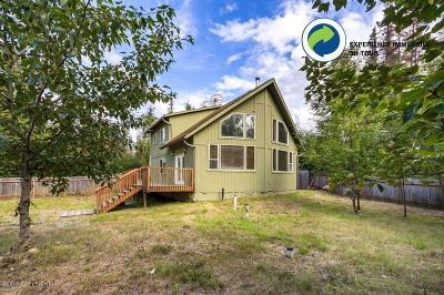 Wasilla Single Family Home For Sale: 10011 W Skyview Drive