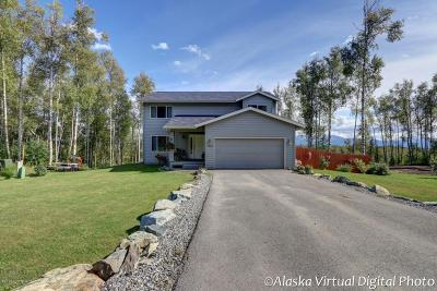 Wasilla Single Family Home For Sale: 5680 S Irwin Drive