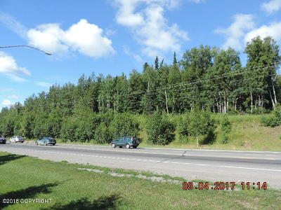 Soldotna Residential Lots & Land For Sale: 134 Foothill Road