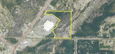 Soldotna Residential Lots & Land For Sale: 43701 Sterling Highway
