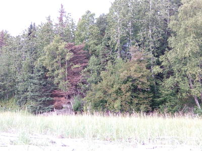 Wasilla Residential Lots & Land For Sale: B014 No Road