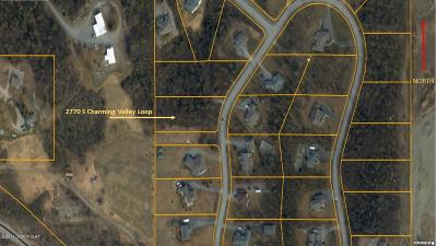 Wasilla Residential Lots & Land For Sale: 2770 Charming Valley Loop