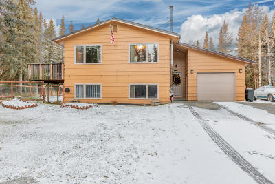Soldotna Single Family Home For Sale: 35283 Ravenwood Street