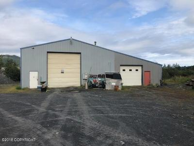 Kodiak AK Business Opportunity For Sale: $379,500