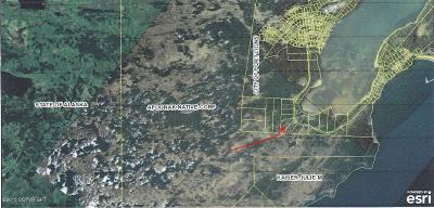 Port Lions AK Residential Lots & Land For Sale: $49,500