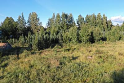 Anchorage Residential Lots & Land For Sale: L25 B2 73rd Avenue