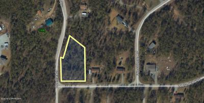Wasilla Residential Lots & Land For Sale: 1475 Bluff View Drive