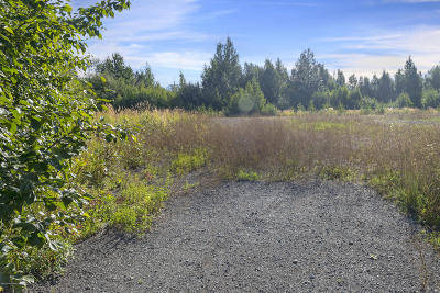 Anchorage, Chugiak, Eagle River Residential Lots & Land For Sale: 12651 Lake Otis Parkway