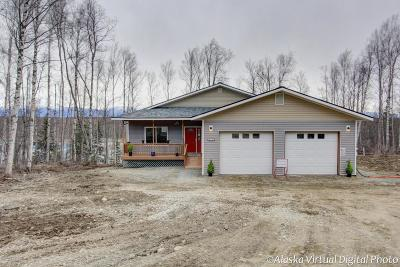Wasilla Single Family Home For Sale: 874 W Nelson Avenue