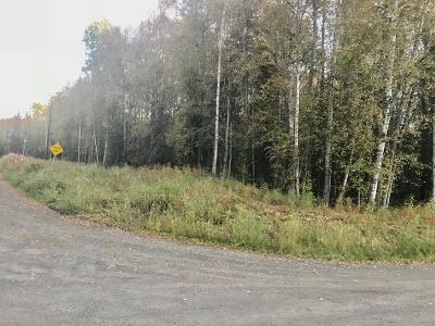 Wasilla Residential Lots & Land For Sale: 9100 Dawn Drive