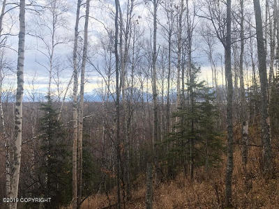 Wasilla Residential Lots & Land For Sale: 7552 Overview Circle