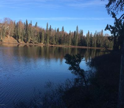 Soldotna Residential Lots & Land For Sale: L341 Hopeful Circle