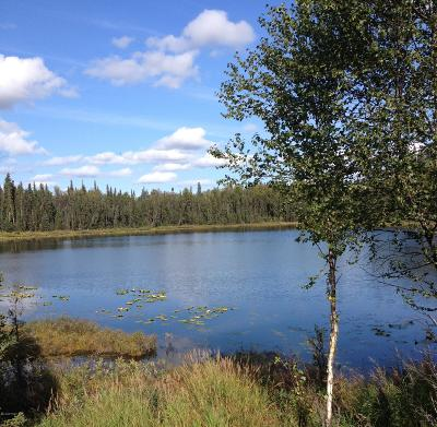 Soldotna Residential Lots & Land For Sale: L3A3 Hopeful Circle