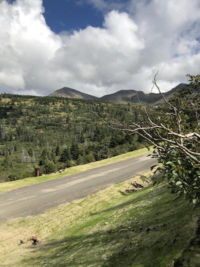 Anchorage Residential Lots & Land For Sale: 15701 Newell Drive