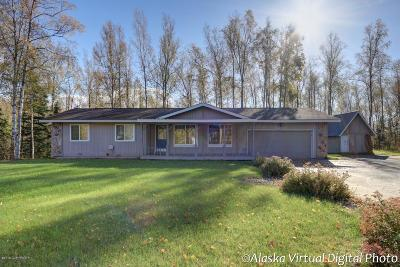 Wasilla Single Family Home For Sale: 7172 W Werner Drive