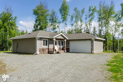 Wasilla Single Family Home For Sale: 2540 Pittman Road