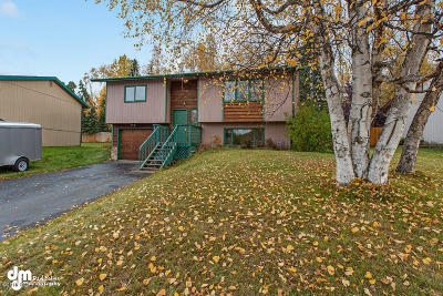 Eagle River, Chugiak Single Family Home For Sale: 18111 Hidden Falls Avenue