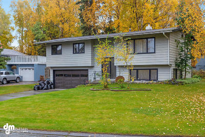 Anchorage Single Family Home For Sale: 13321 Cove Circle