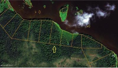 Willow Residential Lots & Land For Sale: Tr 21 Trapper Lake