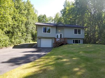 Chugiak Single Family Home For Sale: 22662 McManus Drive