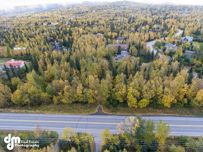 Anchorage Residential Lots & Land For Sale: NHN Hillside Drive