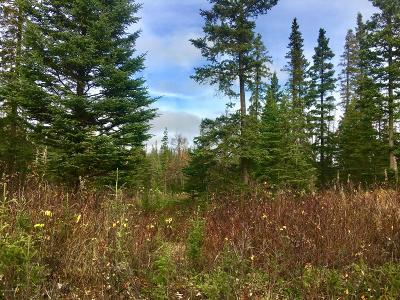 Nikiski/North Kenai Residential Lots & Land For Sale: L14 B5 Timber Hills